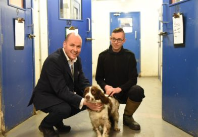 Volunteers wanted to check on welfare of police dogs